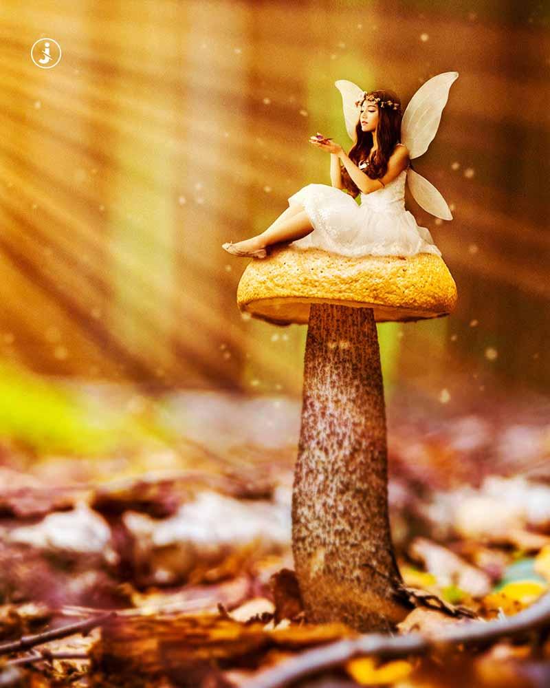Fotomontaggio, Fairy tale