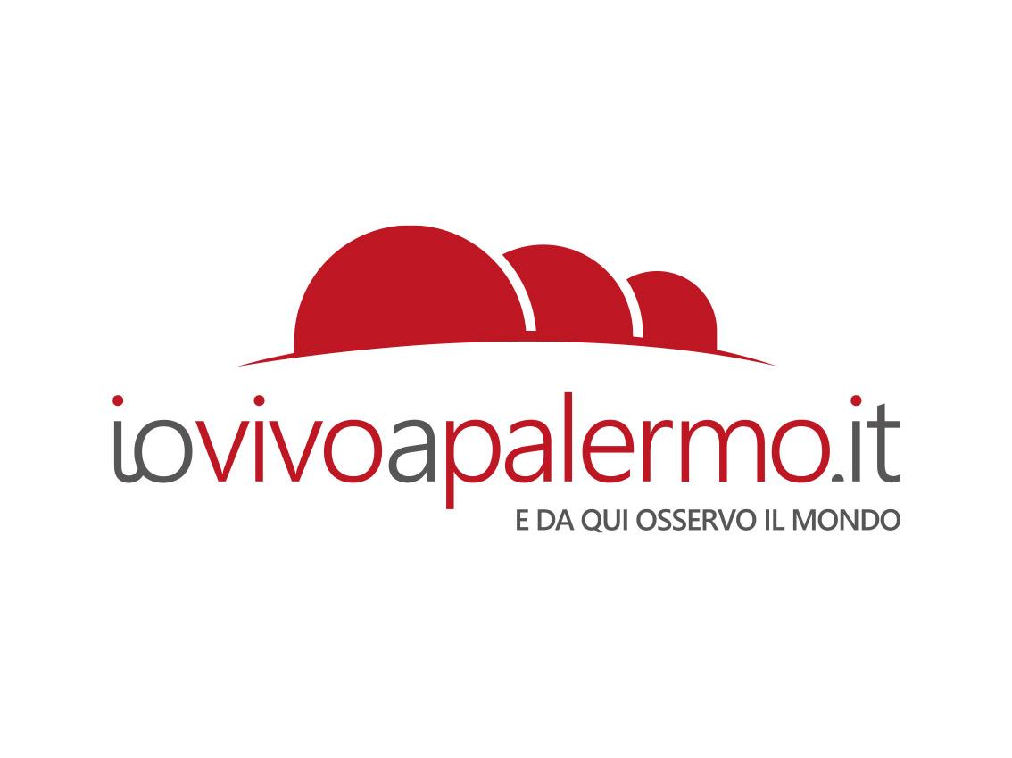Logo Io Vivo a Palermo.it, quotidiano online, Palermo 2015